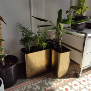 jardinera 3